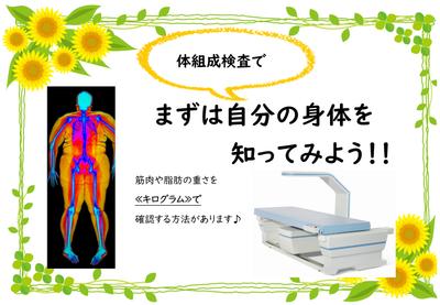 体組成検査.png